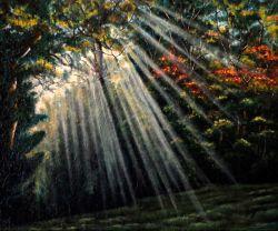 Luce sul creato