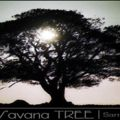 african savana tree