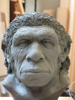 Neanderthal in progress