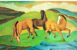 LG 0141 - Cavalli in libertà