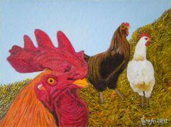 LG 0215 - Il gallo e le galline