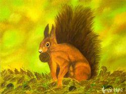 LG 0223 - Lo scoiattolo