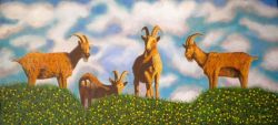 LG 0246 - Le capre di Montecristo