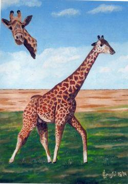 LG 0264 - La Giraffa