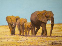 LG 0283 - Elefanti