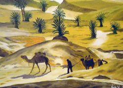 LG 0298 - Tuareg