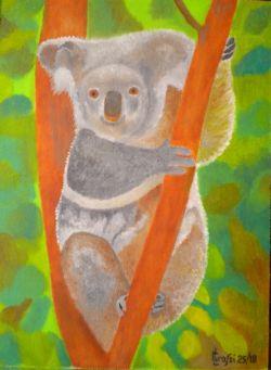 LG 0353 - Il Koala