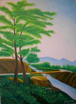 LG 0392 - Il Ponticello sul torrente Meja