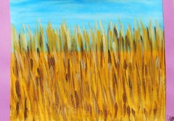 Fields of gold ( Campi d'oro )
