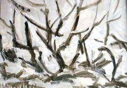 Nevicata -  anno 1956