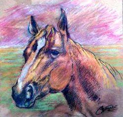 Ritratto di Mijhok Horse - anno 2004