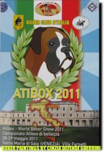 Boxer paintings by cinzia defendi guerrini for atibox 2011